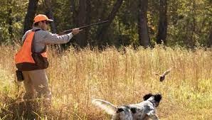 Χωρίς τέλη και εισφορές υπέρ του Δημοσίου συνοδεύεται η φετινή ρυθμιστική απόφαση για το κυνήγι